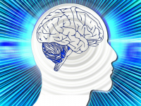 お年寄りの為の脳トレ